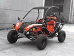 BugsMotors BMKIDS 110cc: подробнее