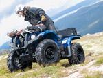 Yamaha Grizzly 450: подробнее