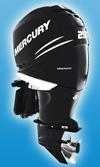 Лодочный мотор Mercury Verado 250 L: подробнее