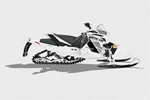 Arctic Cat F1100 Turbo Sno Pro Limited: подробнее