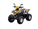 Квадроцикл Stels ATV 100C: подробнее