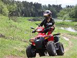 Квадроцикл Stels ATV 110D: подробнее