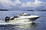Катер Drive boat Hardtop 66: подробнее