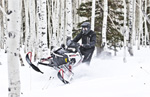 Polaris 800 SWITCHBACK PRO-X: подробнее