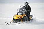 Снегоход TIKSY 250 ЛЮКС: подробнее